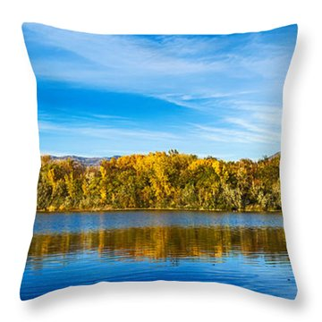 Ogden Throw Pillow