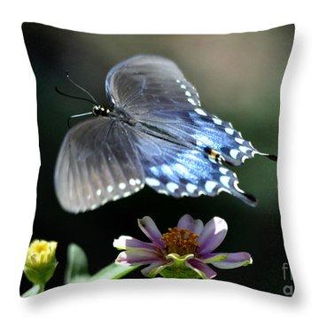 Oh Heavenly Garden Throw Pillow by Nava Thompson