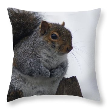 Oh So Cold Throw Pillow by Lorelle Gromus