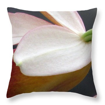 Oh So Shy Throw Pillow by Debi Singer