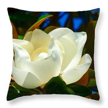Oh Sweet Magnolia Throw Pillow