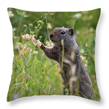 Oh These Are Pretty Throw Pillow by Marty Fancy