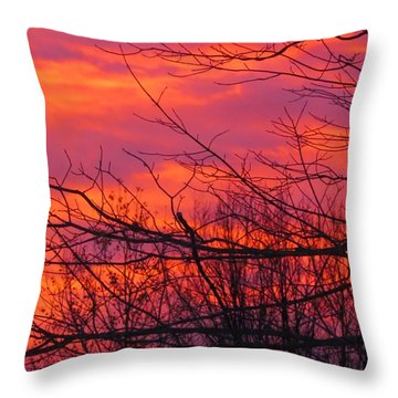 Oh What A Beautiful Morning Throw Pillow by Elizabeth Dow