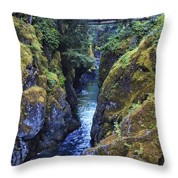 Ohanapecosh River Throw Pillow