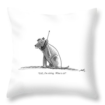 O.k., I'm Sitting.  What Is It? Throw Pillow