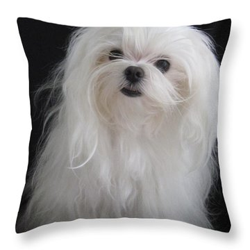 Ok Ok You Got My Attention Throw Pillow