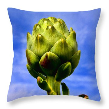 Okey Dokey Artie Choke E Artichokes By Diana Sainz Throw Pillow
