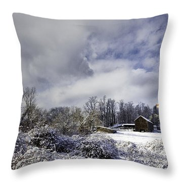 Ol' Man Barker's Farm Throw Pillow by Betty Denise