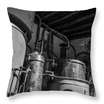 Old Alambic Throw Pillow by Dany Lison