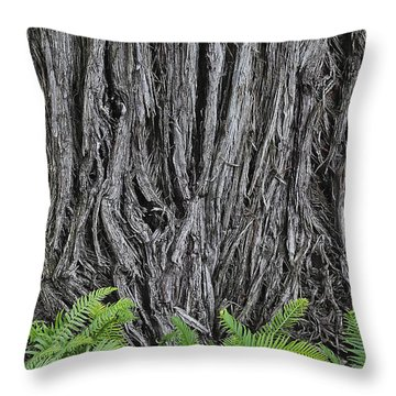 Old And New Growth Throw Pillow