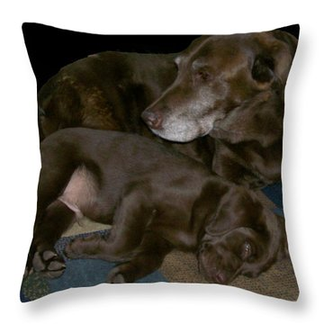 Old And Young Throw Pillow by Barbara S Nickerson