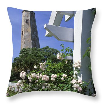 Old Baldy - Fm000078 Throw Pillow