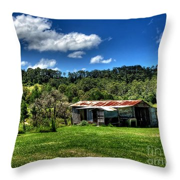 Old Barn In Lush Green Countryside Throw Pillow by Kaye Menner