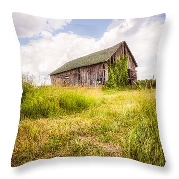 Throw Pillow featuring the photograph Old Barn In Ontario County - New York State by Gary Heller