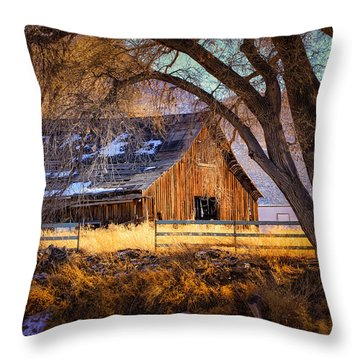 Old Barn In Sparks Throw Pillow