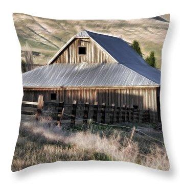 Old Barn Throw Pillow by Steve McKinzie