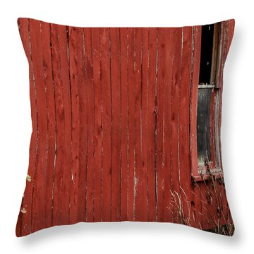 Throw Pillow featuring the photograph Old Barn Window by Debbie Karnes