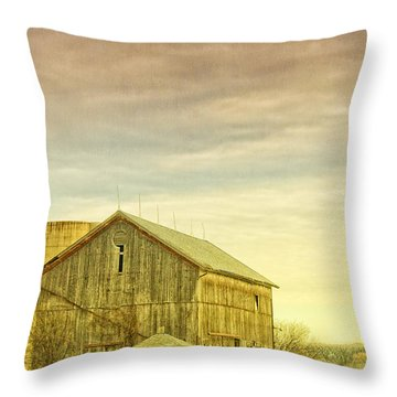 Old Barn With Silo Throw Pillow