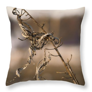 old beauty  Leif Sohlman Throw Pillow