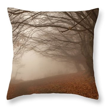 Old Beech Trees In Fog Throw Pillow