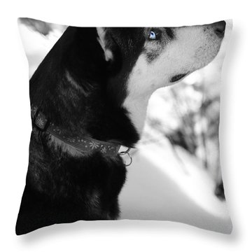 Old Blue Eye Throw Pillow by Carol Groenen