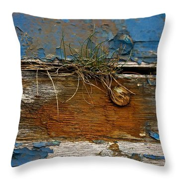 Throw Pillow featuring the photograph Old Boat - Peeling Paint by Liz  Alderdice