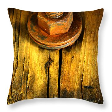 Old Bolt Throw Pillow by Newel Hunter