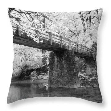Old Brige Throw Pillow