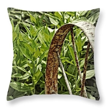 Old But New Purpose Throw Pillow