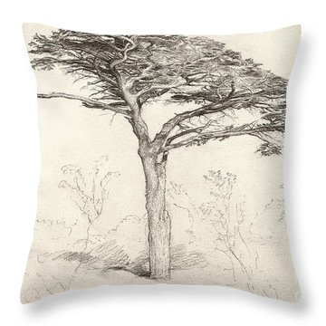 Old Cedar Tree In Botanic Garden Chelsea Throw Pillow