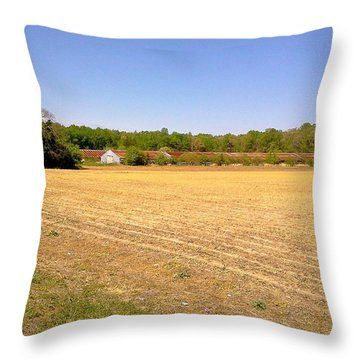 Old Chicken Houses Throw Pillow by Amazing Photographs AKA Christian Wilson
