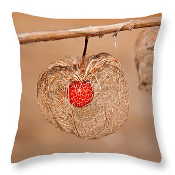 Old Chinese Lantern Pod Art Prints Throw Pillow