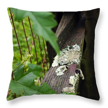 Throw Pillow featuring the photograph Old Country Fence by Deborah Fay