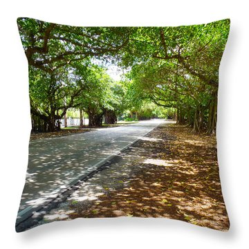 Old Cutler Throw Pillow by Carey Chen