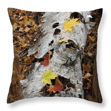 Old Fallen Birch Throw Pillow