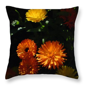 Throw Pillow featuring the photograph Old-fashioned Marigolds by Martin Howard