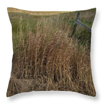 Old Fence Line Throw Pillow