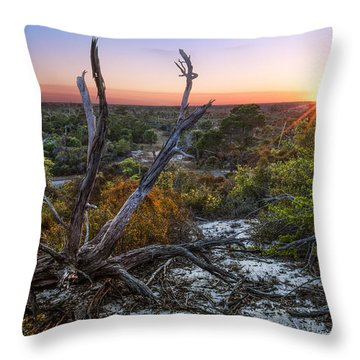 Old Florida Throw Pillow by Debra and Dave Vanderlaan