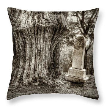 Companion Throw Pillows