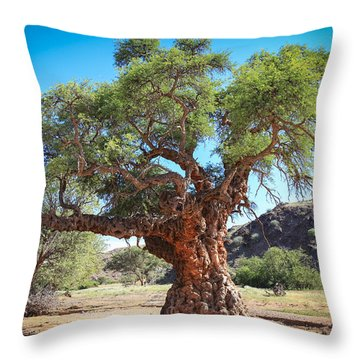 Old Gnarled Tree Throw Pillow