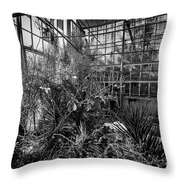 Old Greenhouse One Throw Pillow