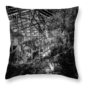 Old Greenhouse Two Throw Pillow