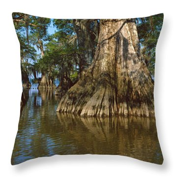 Old-growth Cypresses At Lake Fausse Throw Pillow