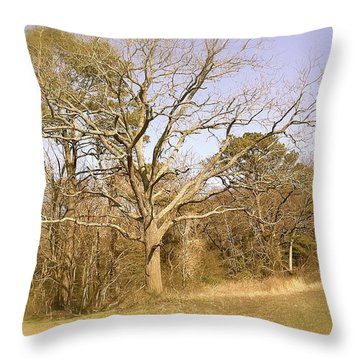 Old Haunted Tree Throw Pillow by Amazing Photographs AKA Christian Wilson