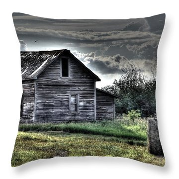 Old Homestead 3 Throw Pillow