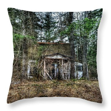 Old House With Overgrown Brush Throw Pillow by Dan Friend