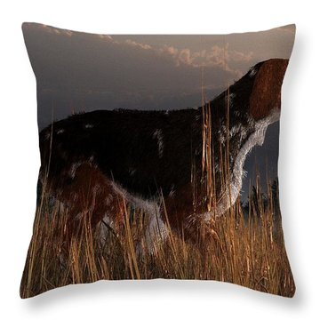 Old Hunting Dog Throw Pillow