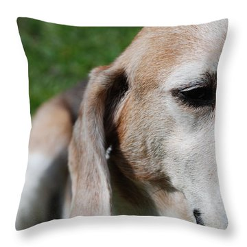 Old Is Beautiful Throw Pillow by Jennifer Ancker