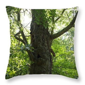 Throw Pillow featuring the photograph Old Man Of The Forest by Deborah Fay