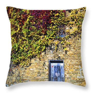 Old Mill Door Throw Pillow by Paul W Faust -  Impressions of Light
